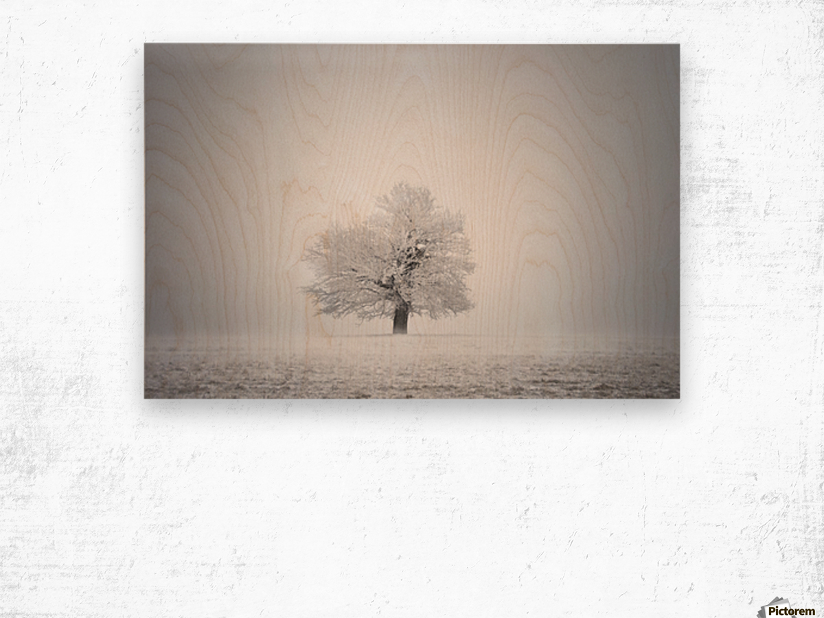 White solitude and light Wood print