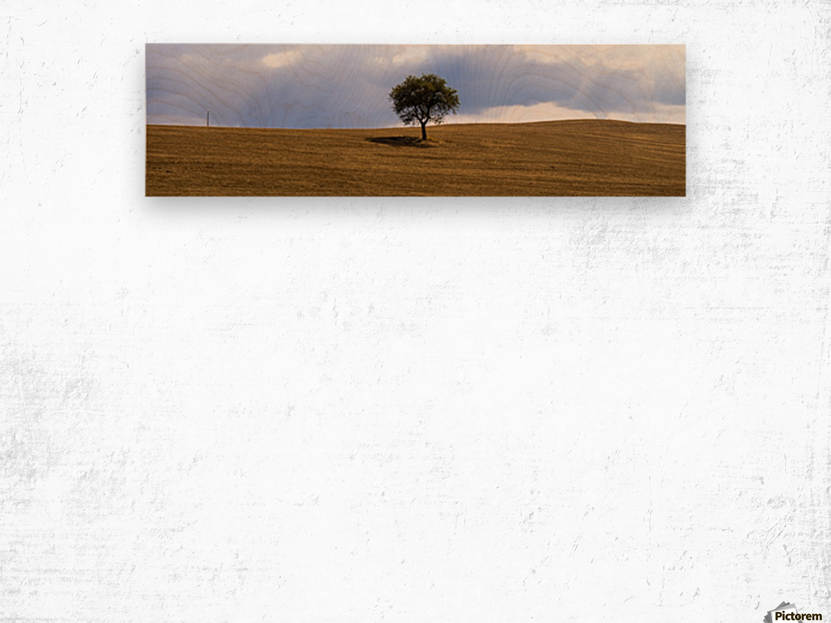 Tuscany Tree Wood print