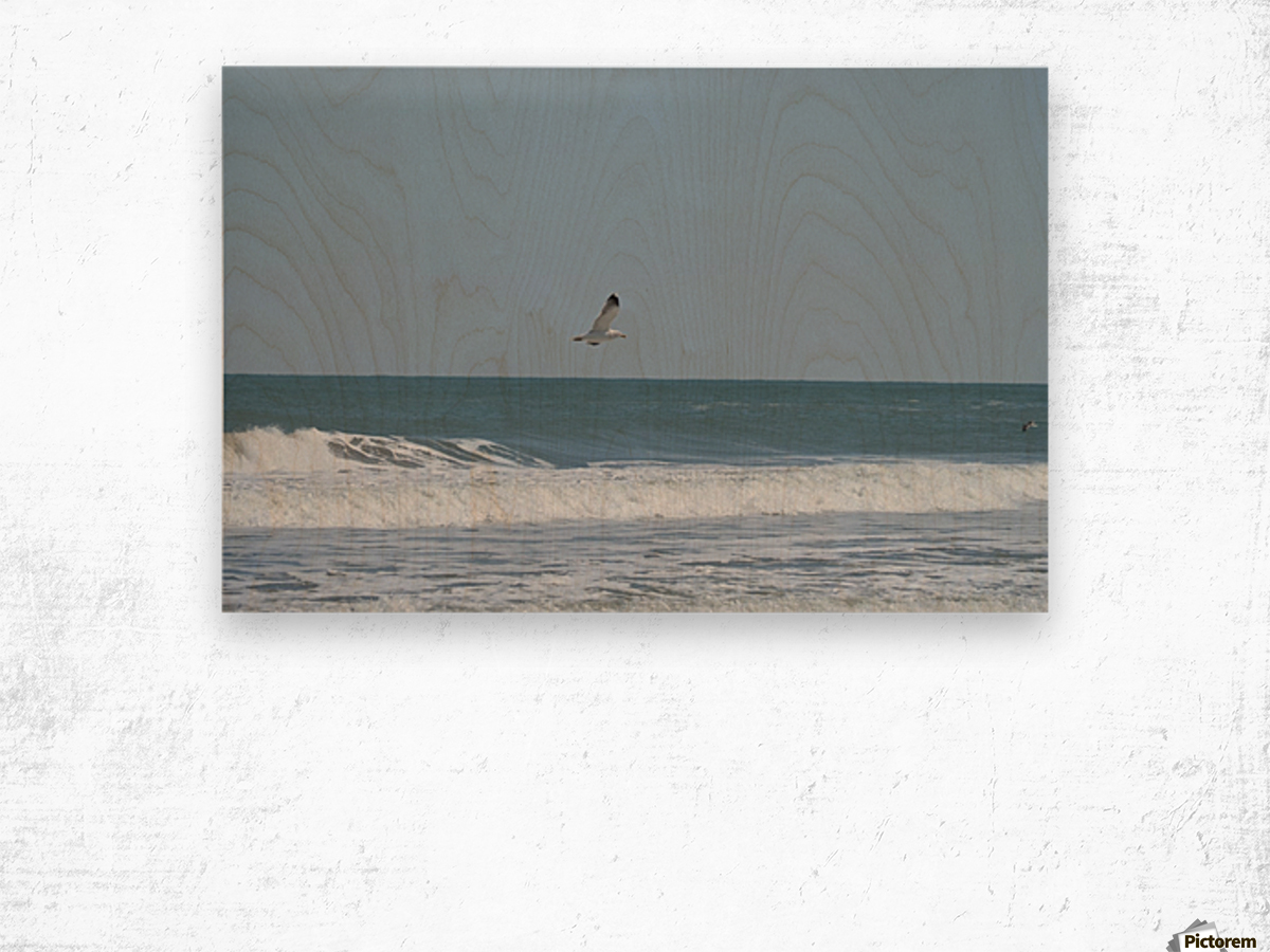 Seagull flying over waves Wood print
