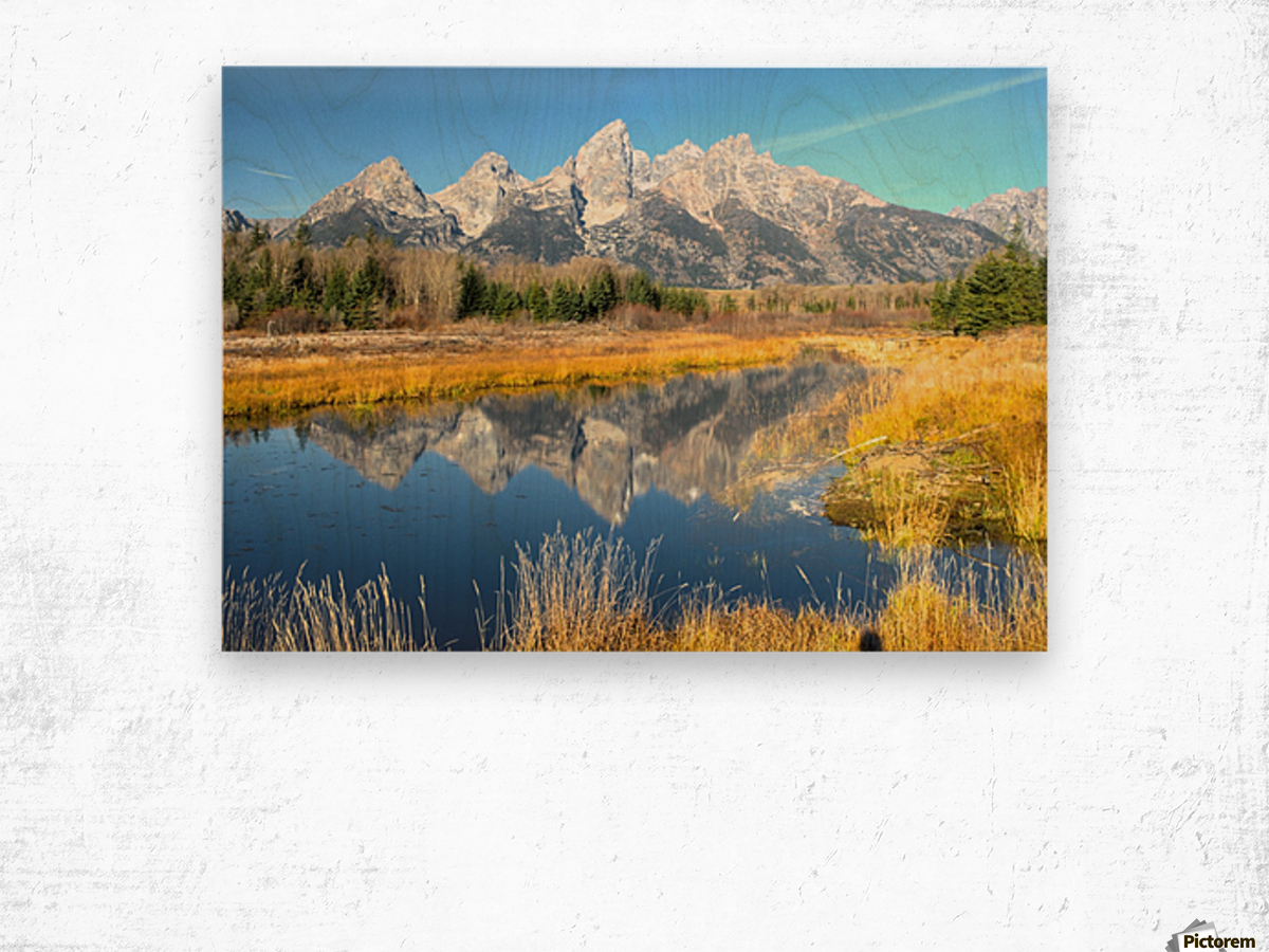 Beavers View of Tetons Wood print