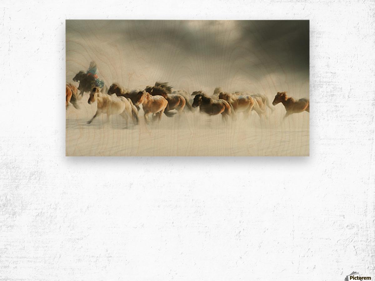 Horses gallop Wood print