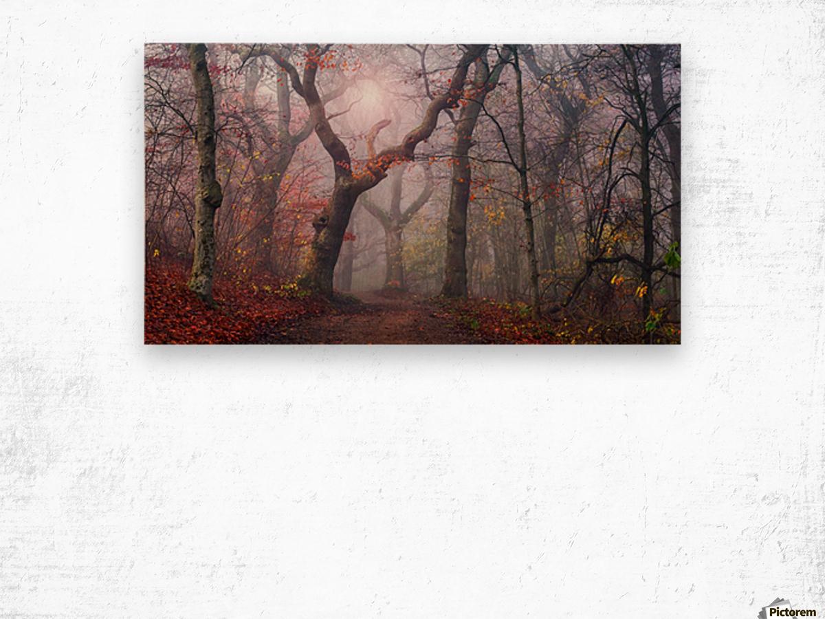 Walking the old path. Wood print