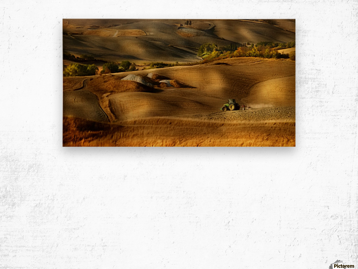 Preparation for sowing - Volterra (PI) - Toscana - Italy Wood print