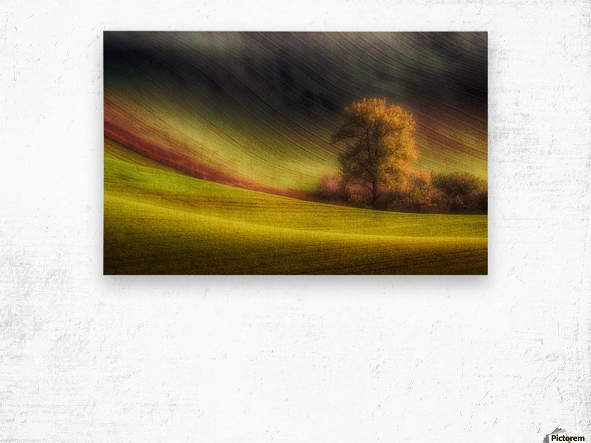 Moravian fields Wood print
