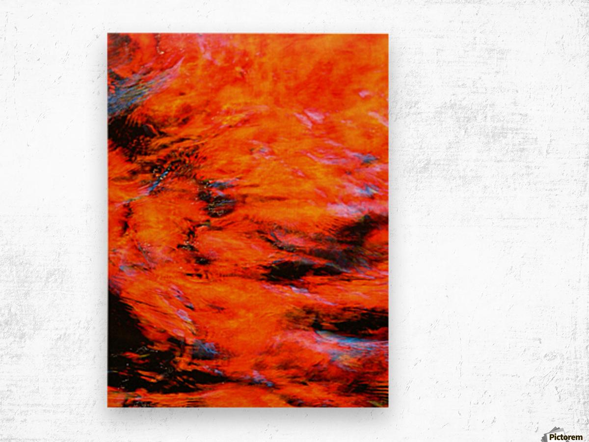 The Flock Orange Wood print