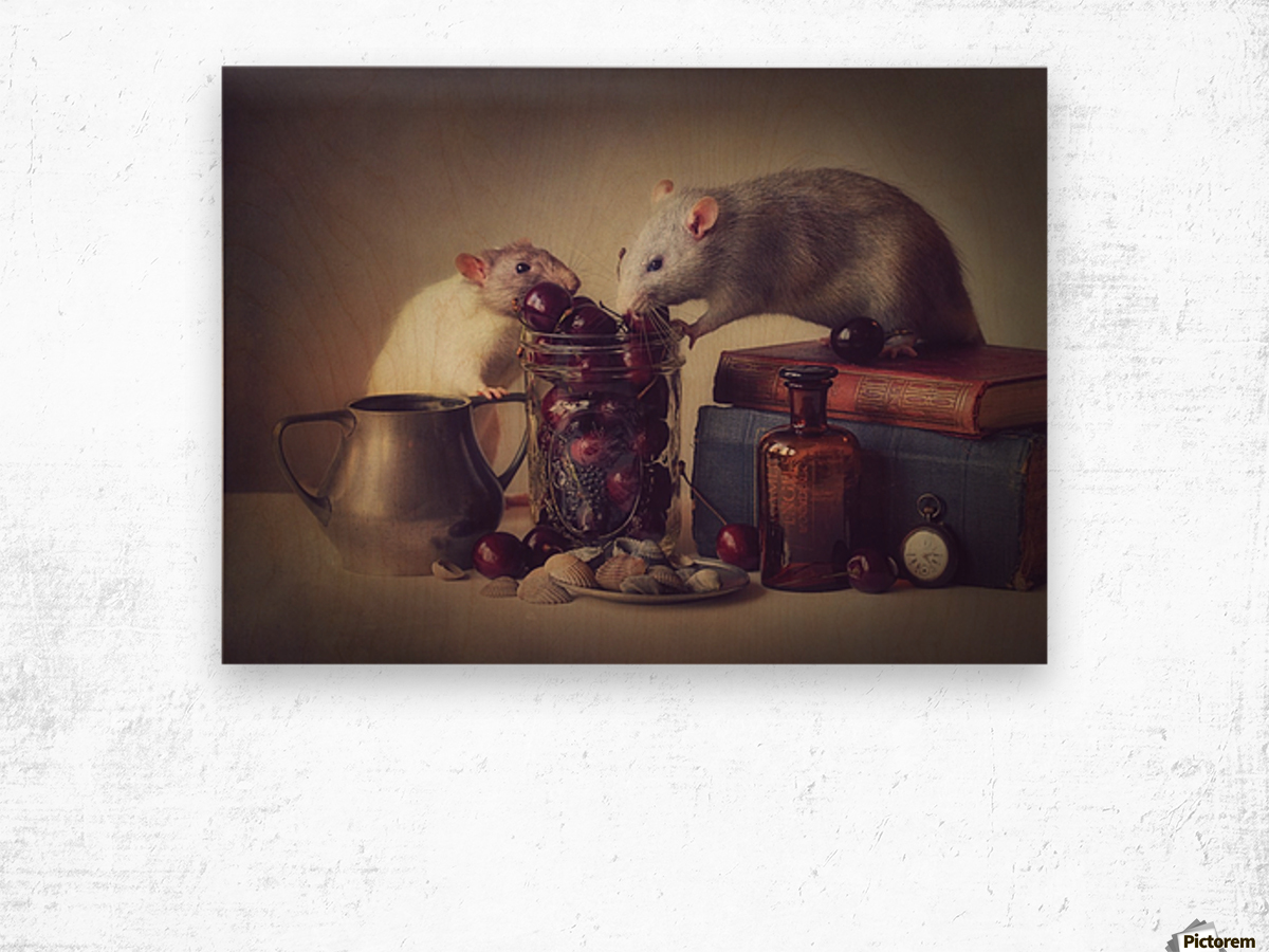 Snoozy and Jimmy Wood print