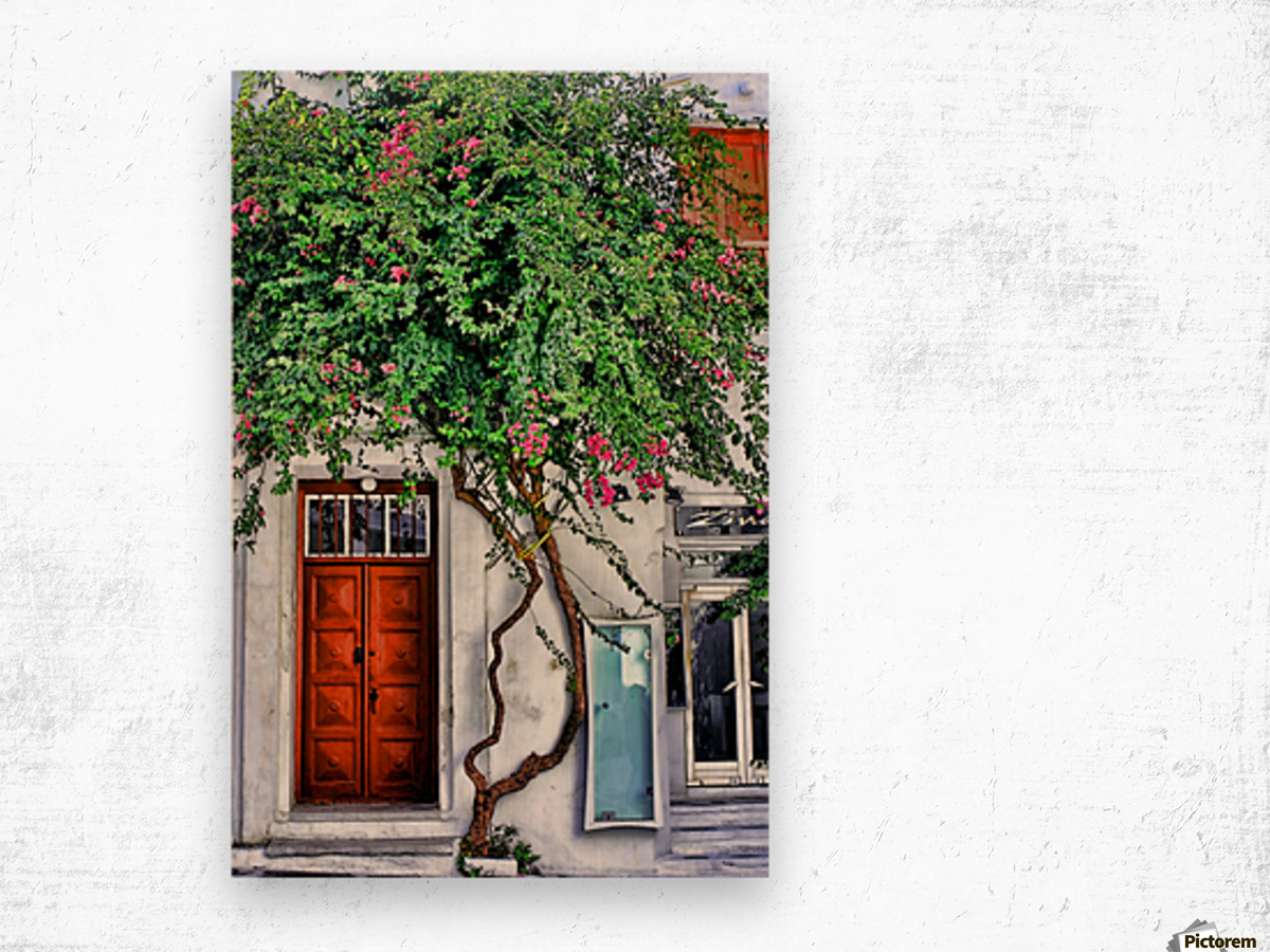 the door mykonos  Wood print