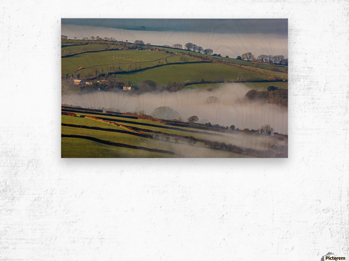 Agricultural mist Wood print