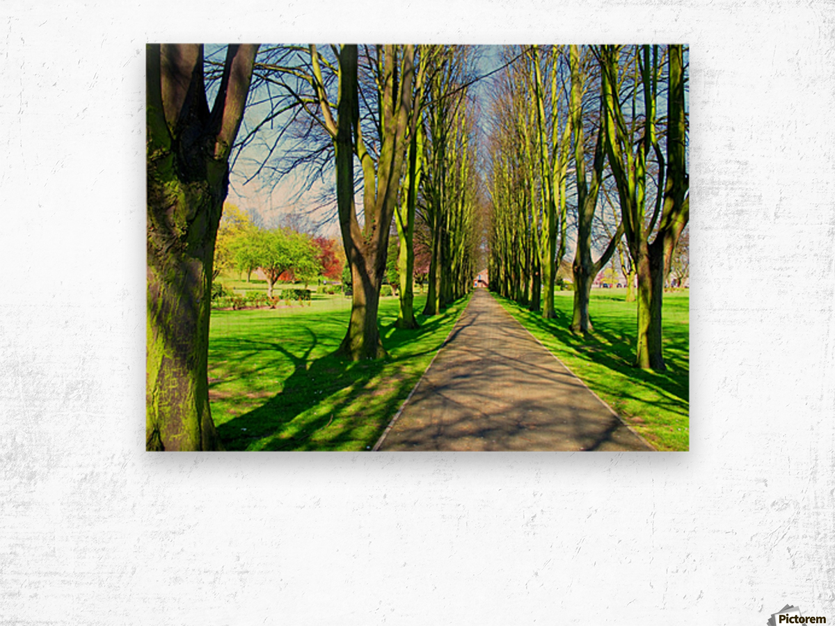 Summer Avenue Wood print
