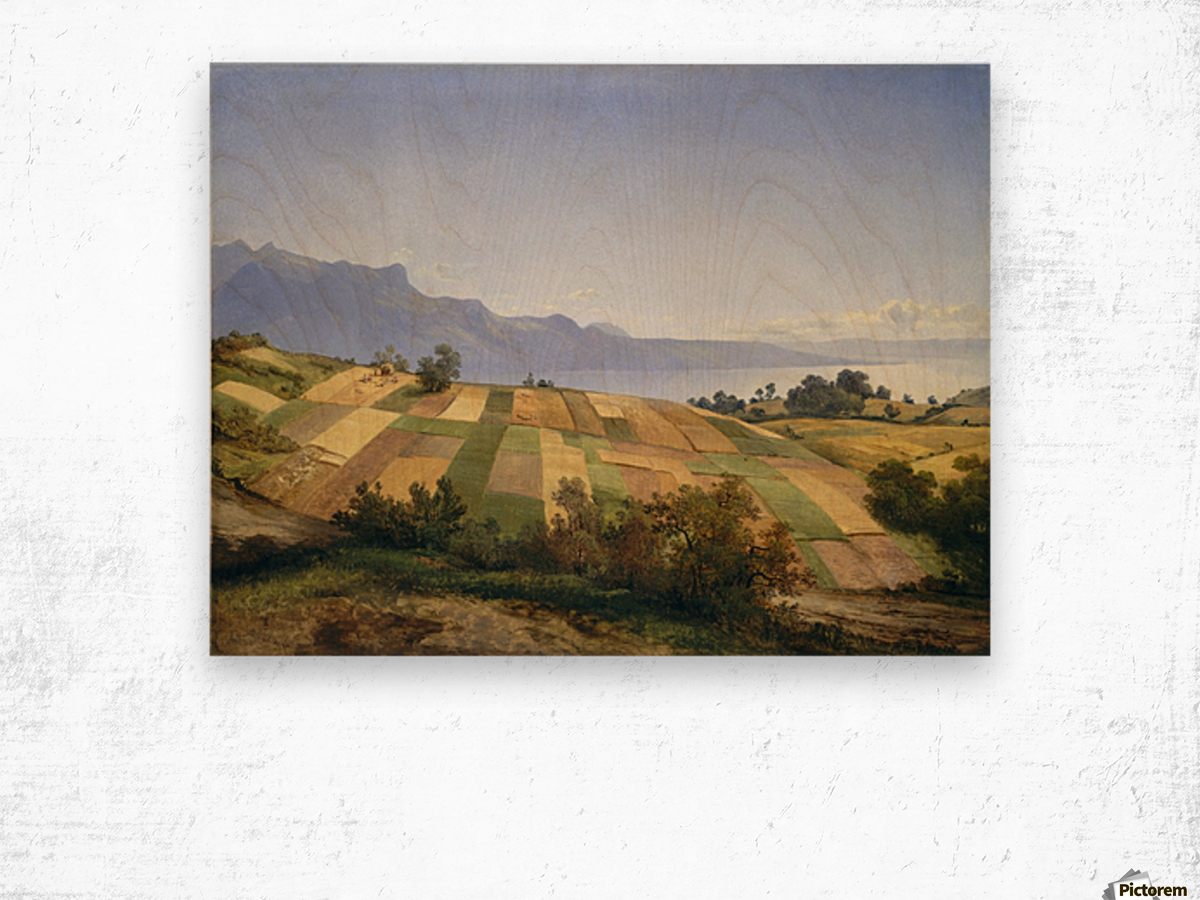 Swiss Landscape 1830 Wood print