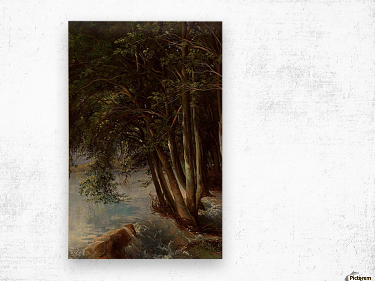 A lovely forest Wood print