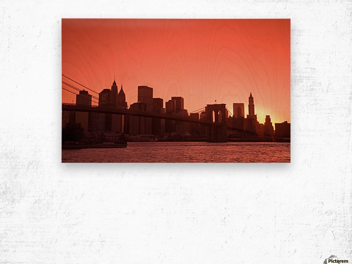 Lower Manhattan Skyline Viewed From Brooklyn Bridge Park, Brooklyn, New York City, New York, Usa Wood print
