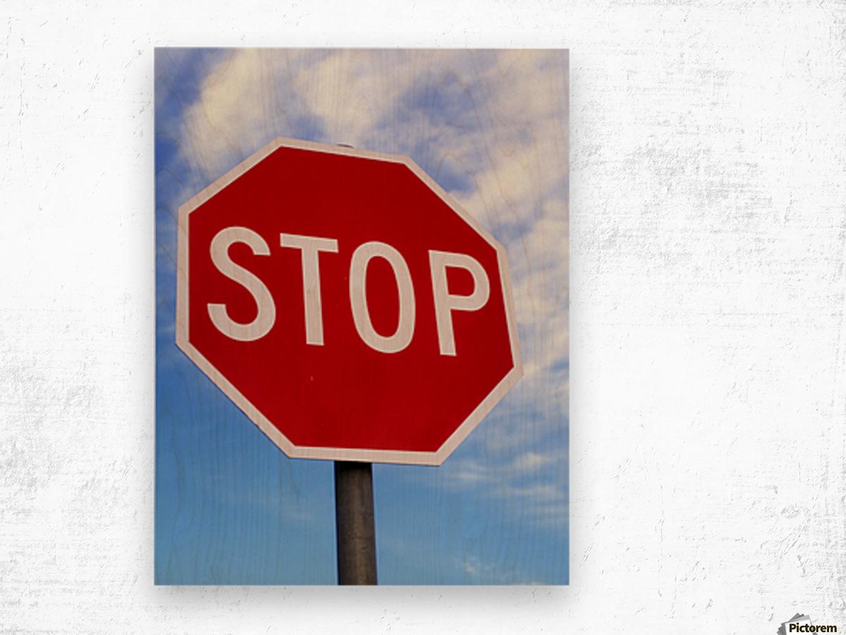 Stop Sign; Ireland Wood print