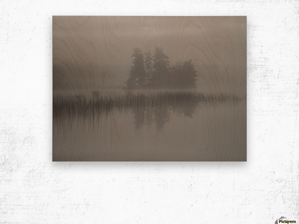 Lake Of The Woods, Ontario, Canada; Mist Rises Over Lake Wood print