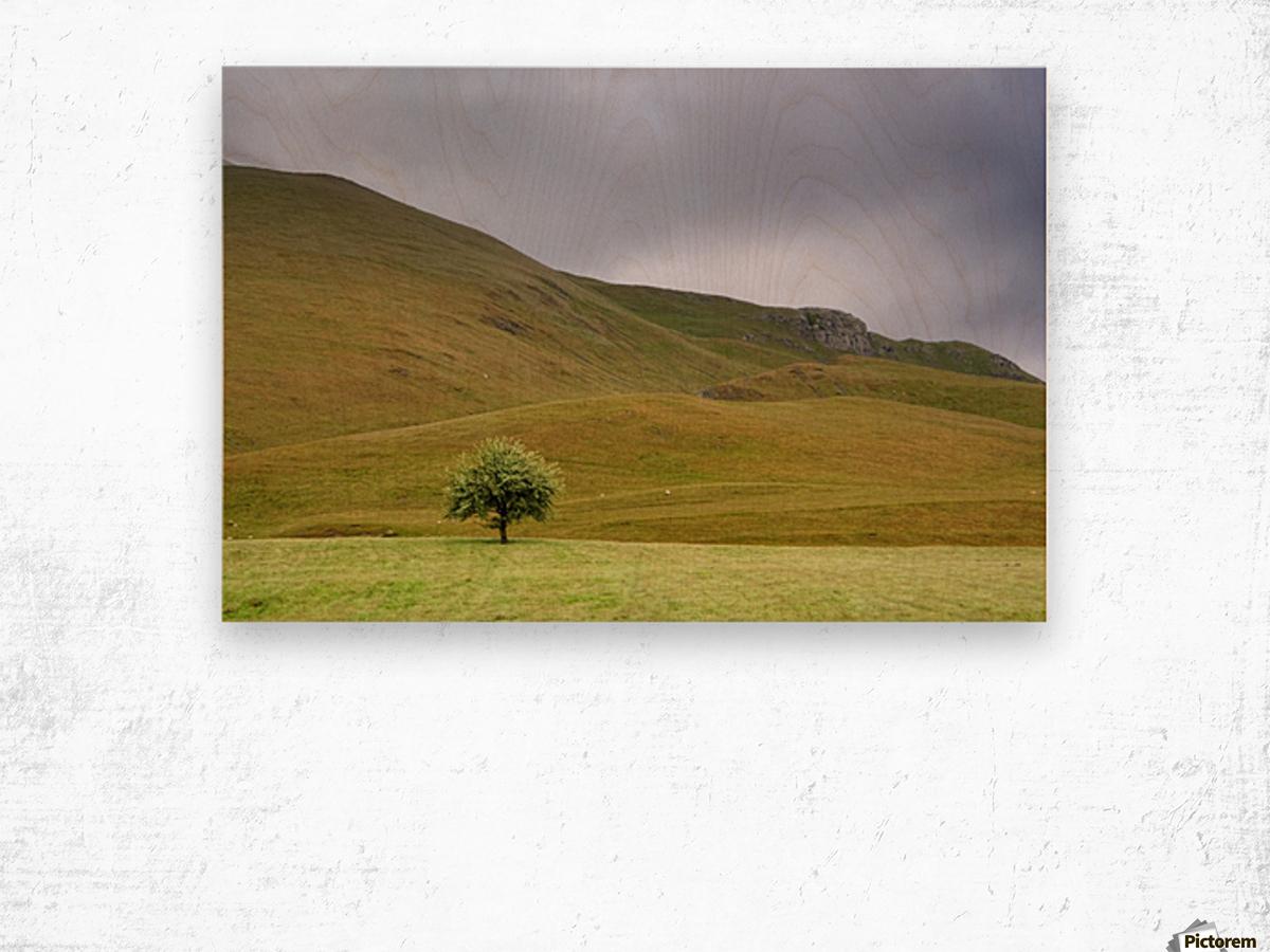 Dark Skies, England Wood print