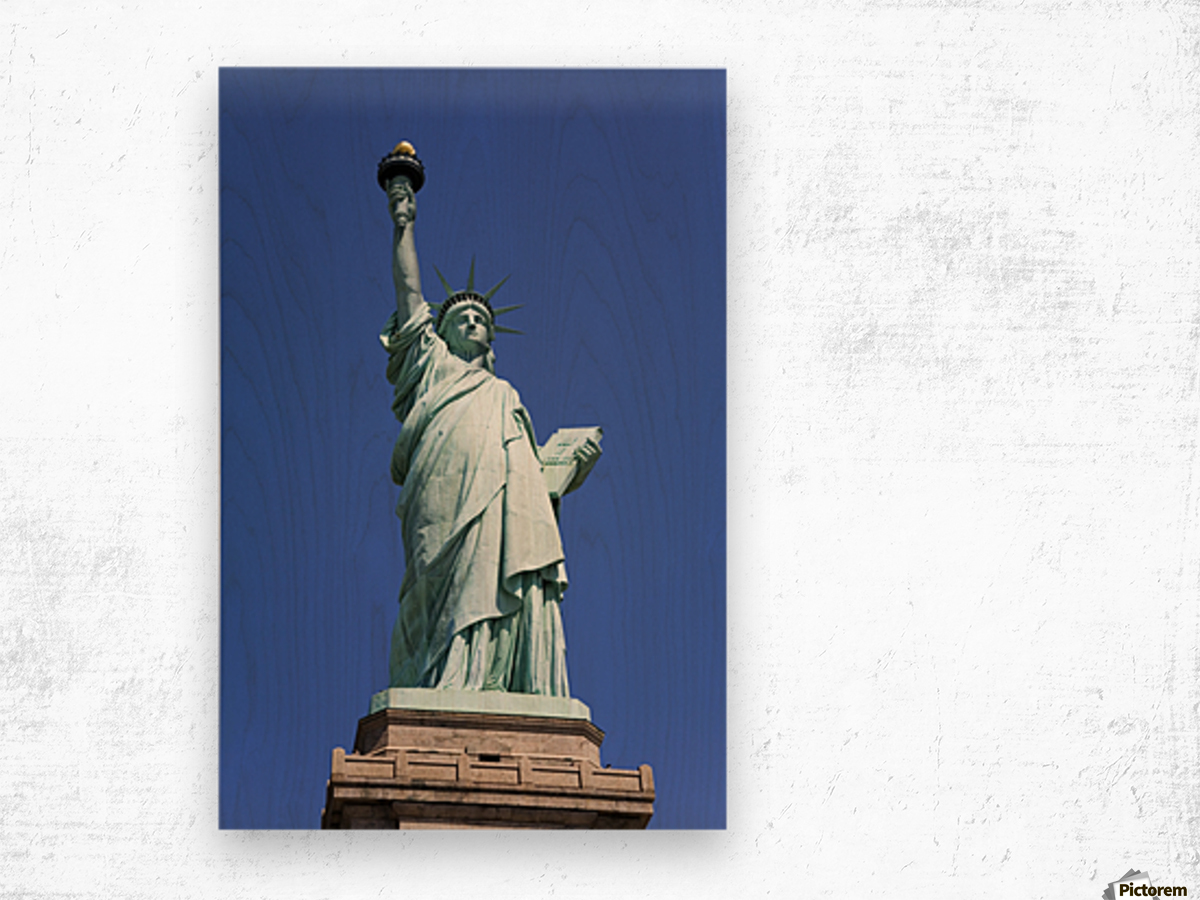 Statue Of Liberty, Lower Manhattan, New York City, New York, Usa Wood print