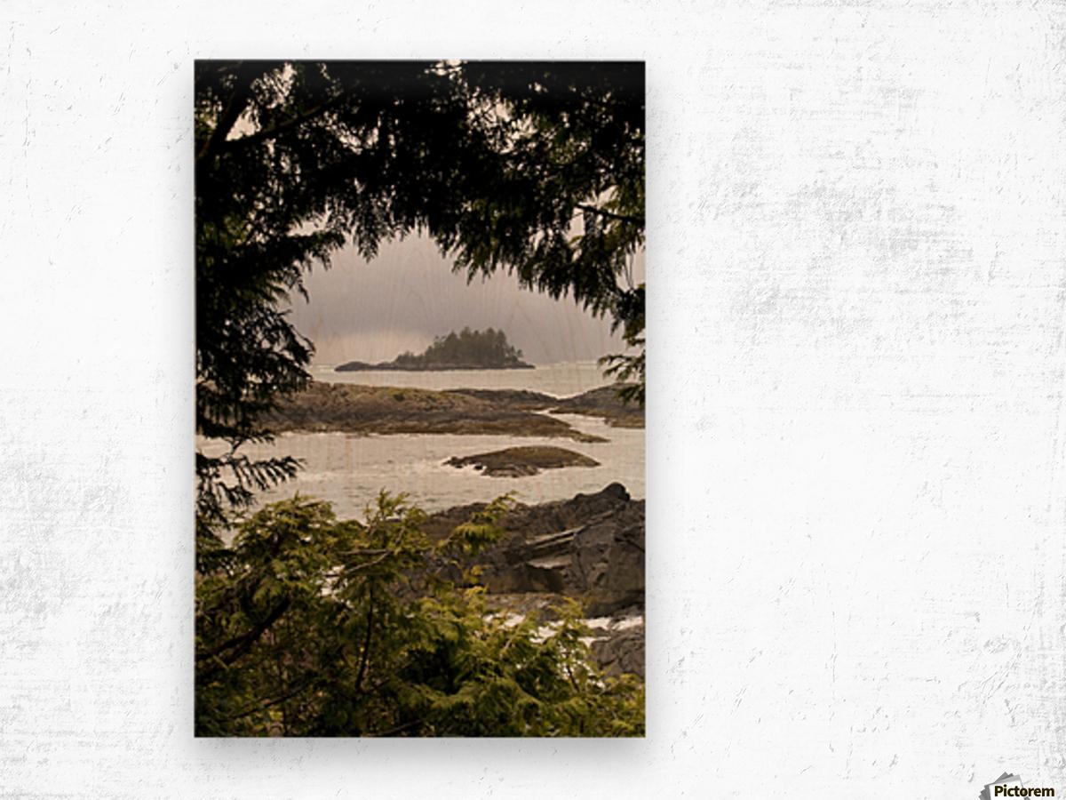 Coastal Scenery, Tofino, British Columbia, Canada Wood print