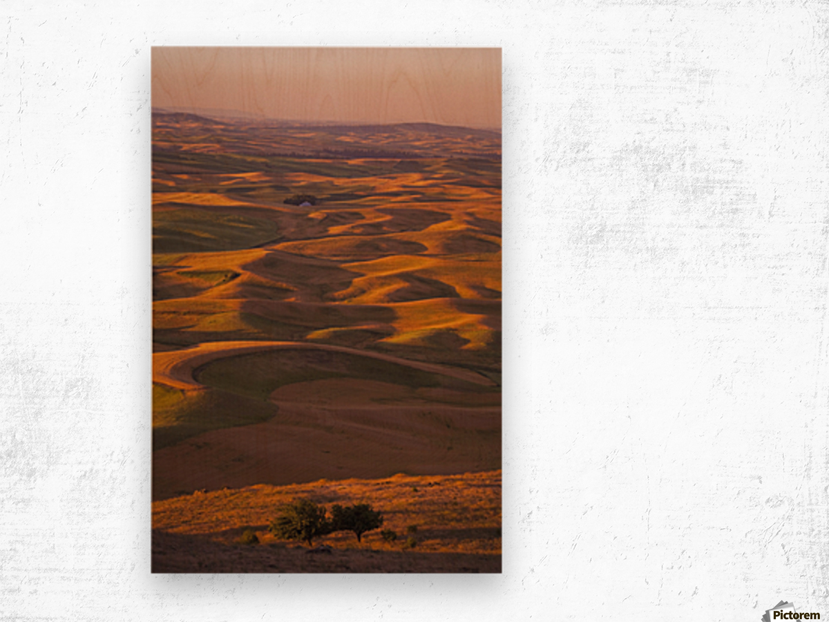 Hilly Landscape Wood print