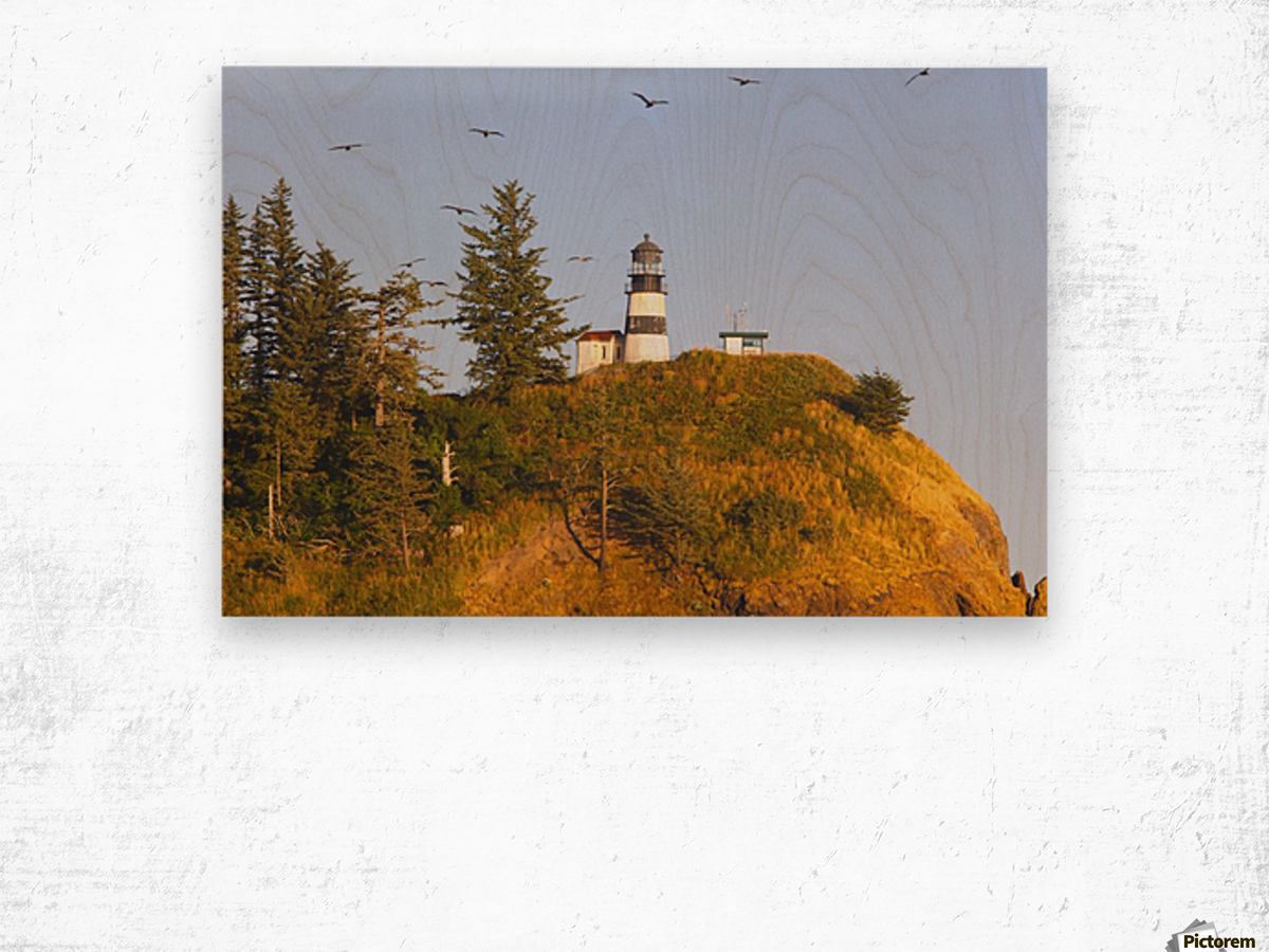Birds In Flight Over Cape Disappointment Lighthouse; Ilwaco, Washington, United States of America Wood print