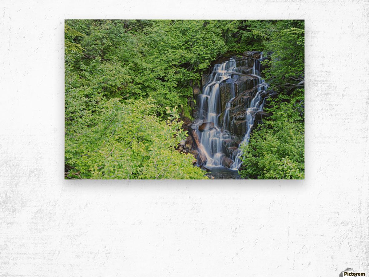 Stevens creek waterfall mount rainer national park near seattle;Washington united states of america Wood print