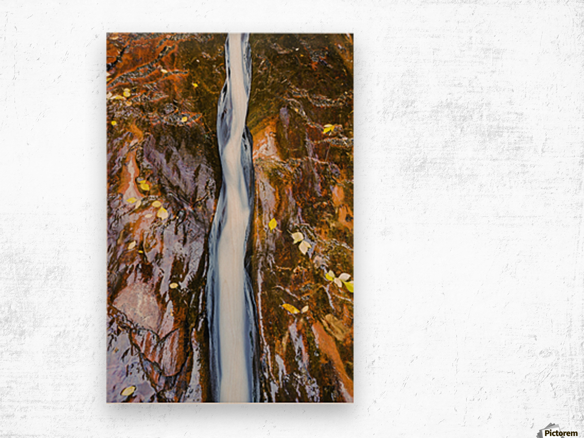 Water flowing in beautiful stone rivet along the subway trail in zion national park;Utah, united states of america Wood print