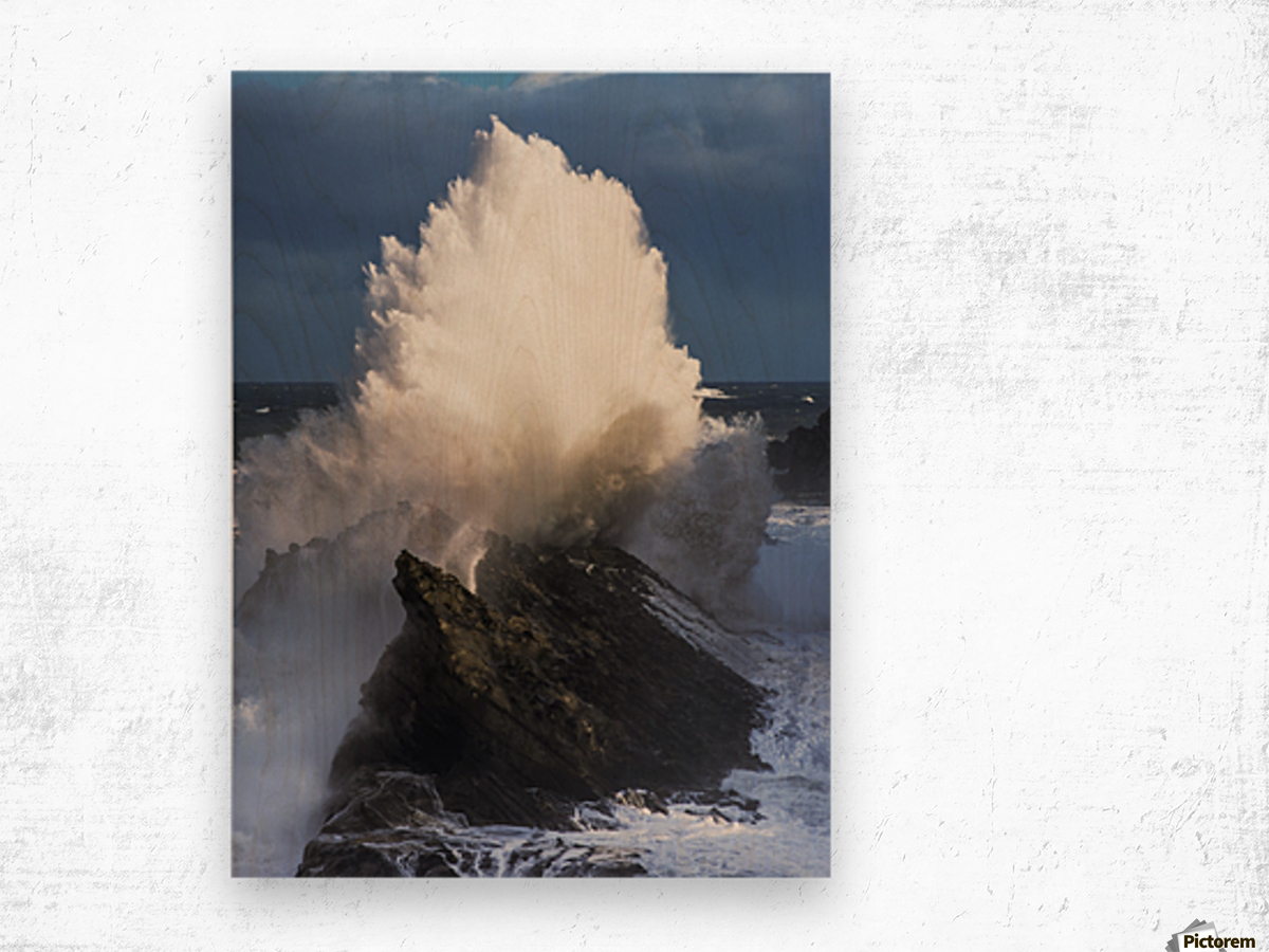 Surf erupts on the rocks at Shore Acres State Park; Charleston, Oregon, United States of America Wood print