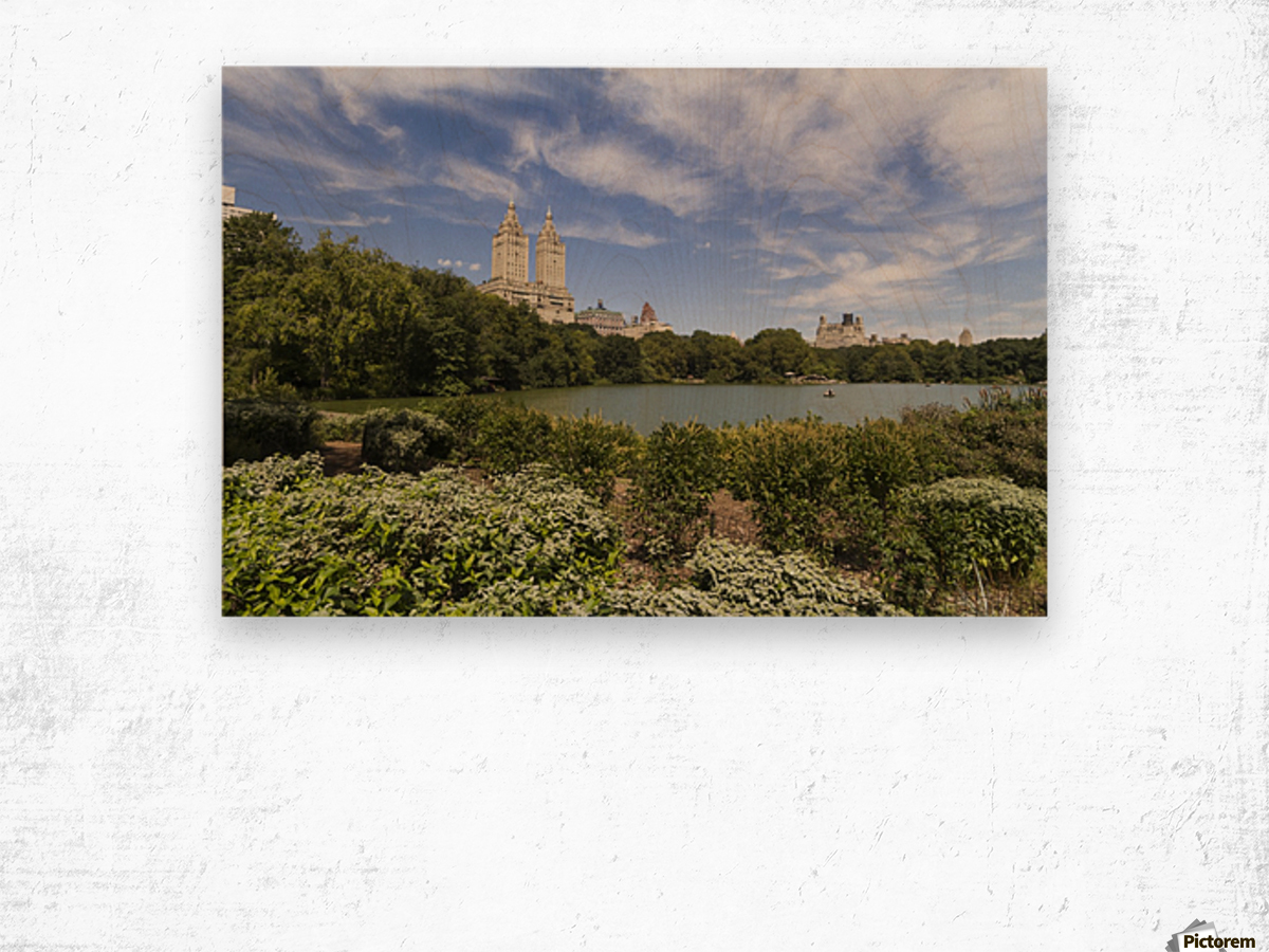 The Lake in Central Park, New York City, New York, United States Wood print