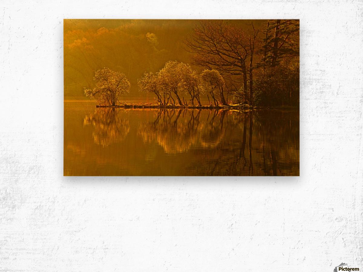 Gold Morning, Lake District, UK Wood print