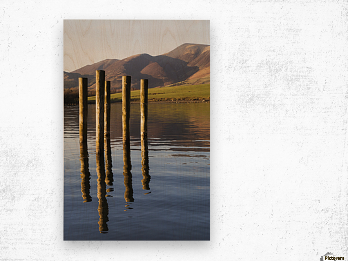 Wooden posts reflected in tranquil after with mountains the the background; Keswick, Cumbria, England Wood print