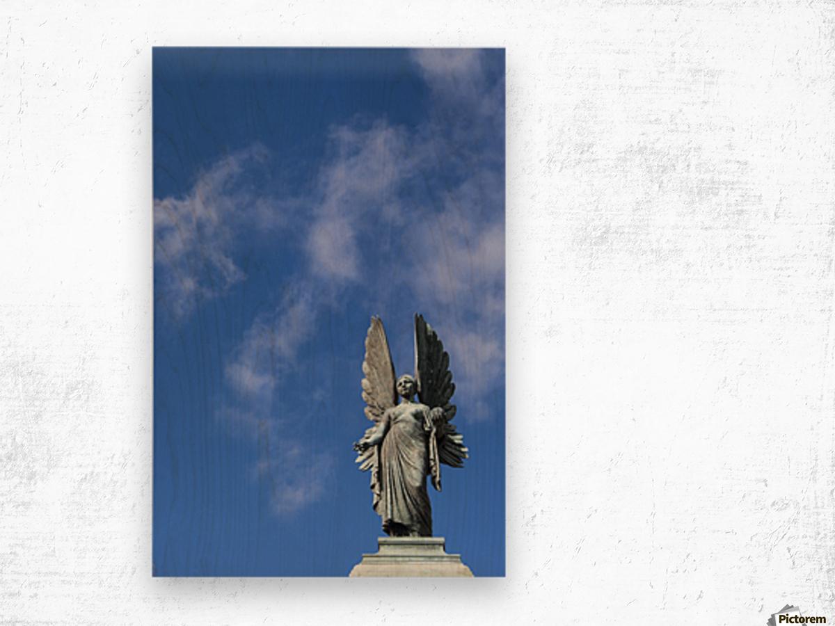 Angel overlooking Parade Gardens; Bath, Somerset, England Wood print