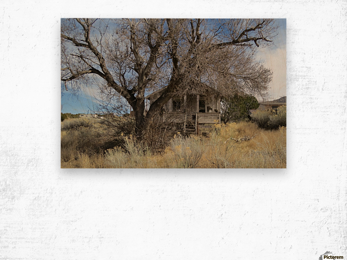 Turquoise Trail - This Old House 1VP Wood print
