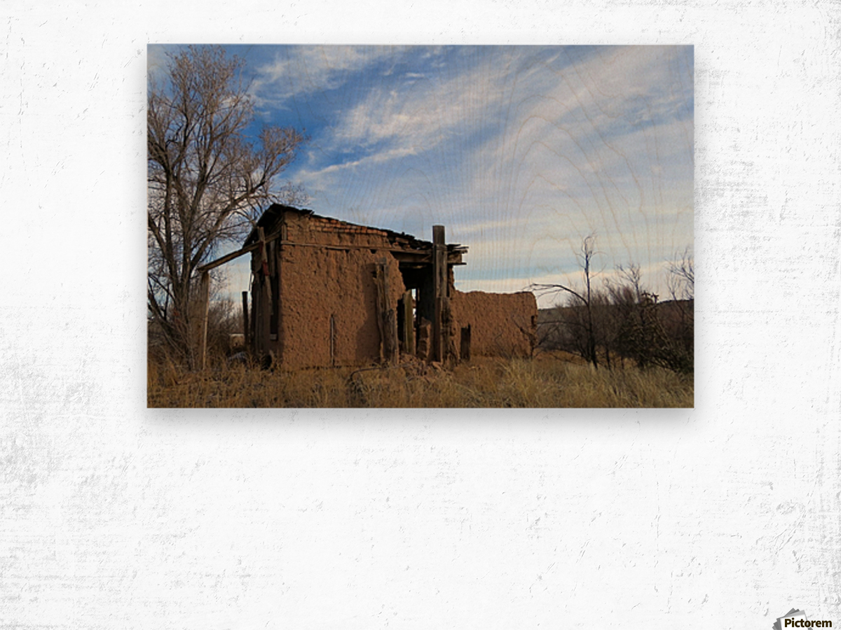 Turquoise Trail - Ruins in Golden 2VP Wood print