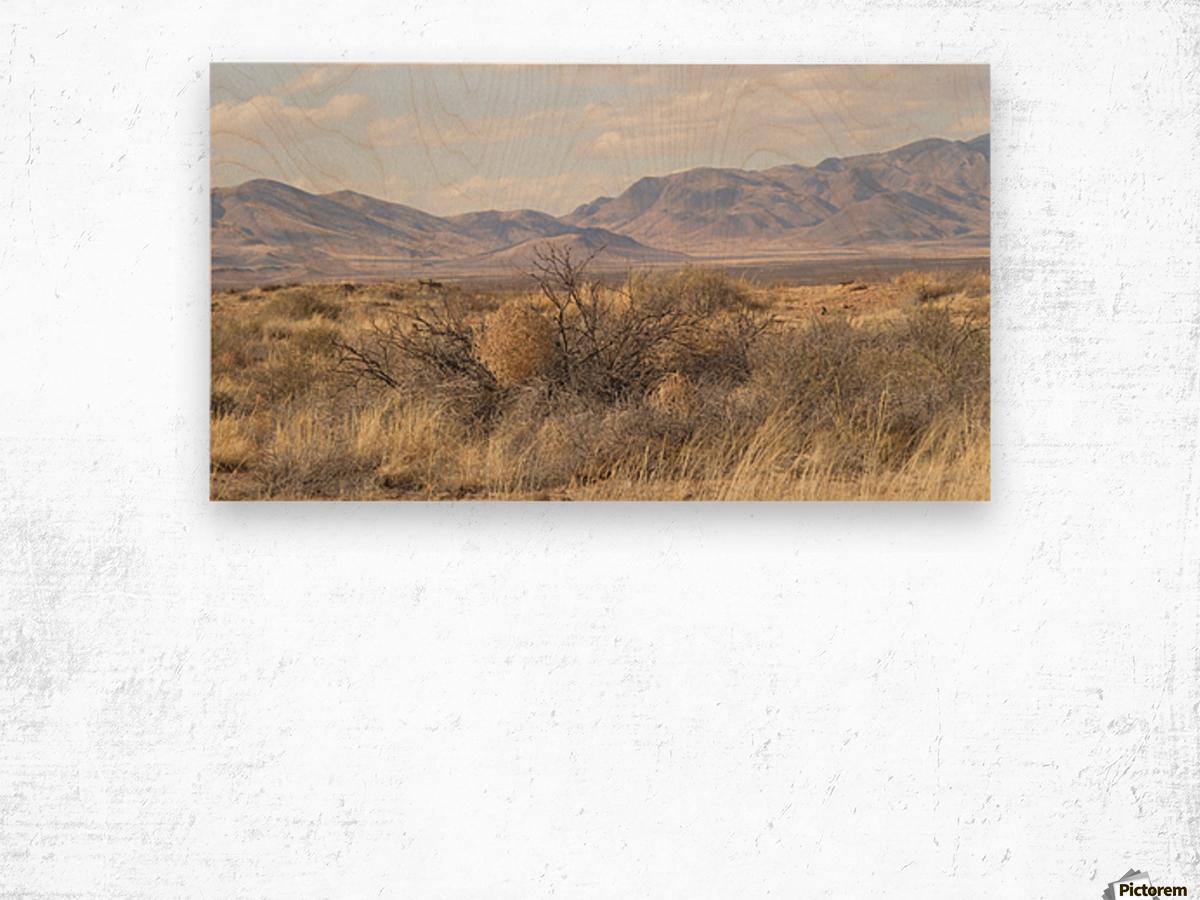 Landscape around Fort Craig VP1 Wood print