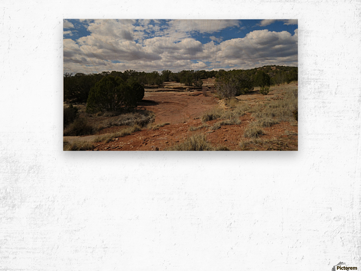 Landscape Near the Ruins of the Abo Pueblo VP9 Wood print