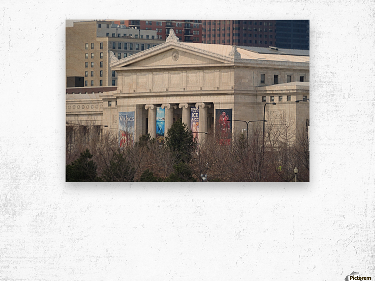 Field Museum from Northerly Island VP11 Wood print