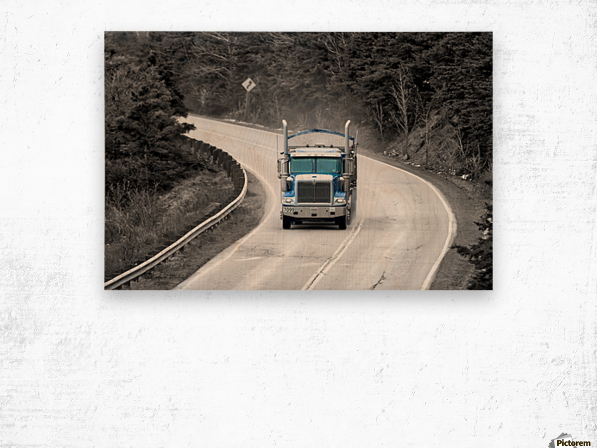 4551_H Wood print