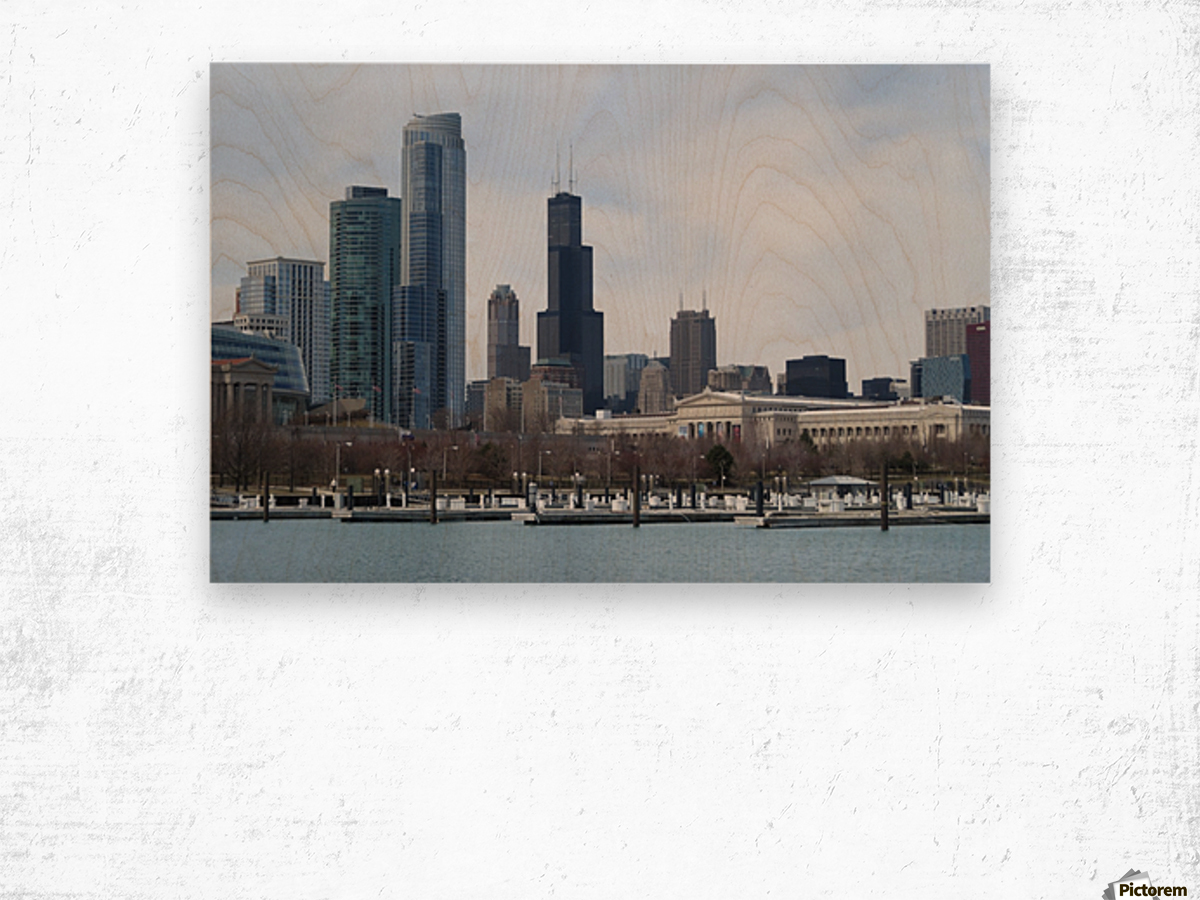 View of Chicago From Northerly Island VP2 Wood print