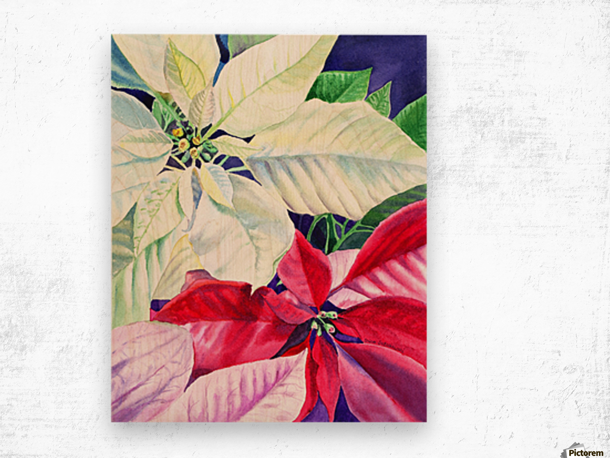 White Red Pink Poinsettia Wood print