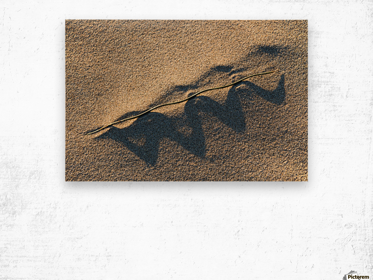 Grass Blade and Serpent Shadow Wood print