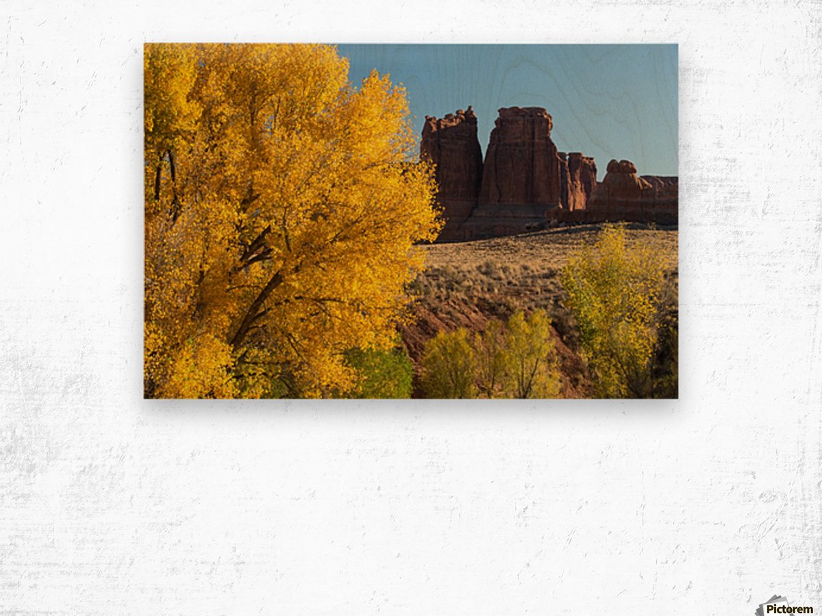 Fall at Courthouse Wash Wood print