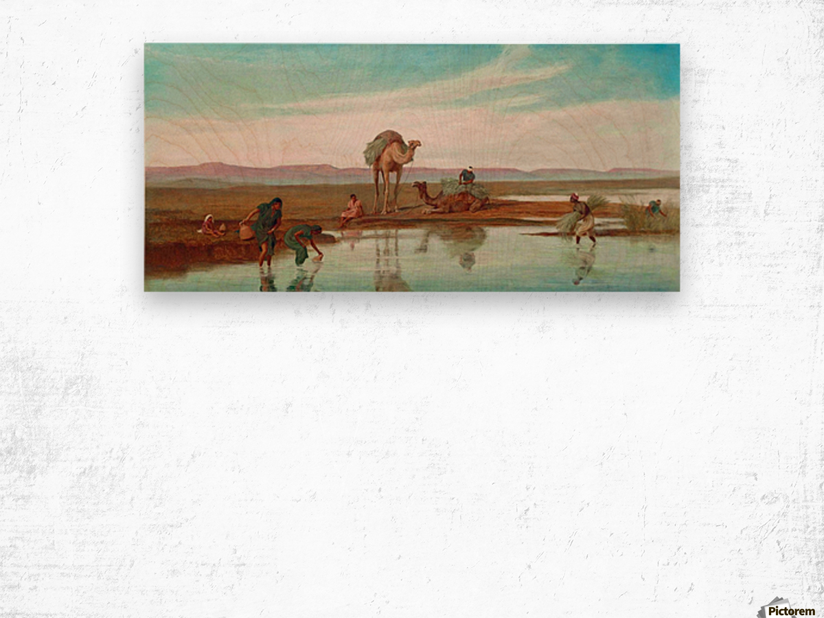 Cutting Rushes by the Nile Wood print