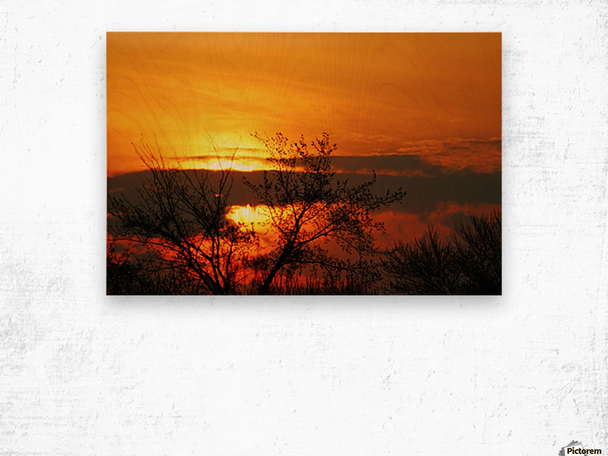 Morning Glow Wood print
