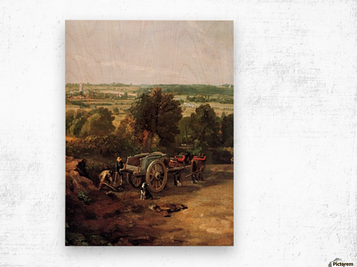 A carriage and a dog at the edge of a city Wood print