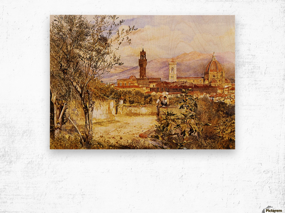 View of the Duomo fro the Mozzi Garden Florence 1877 Wood print