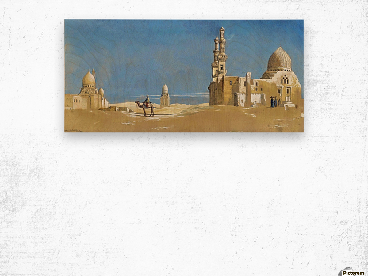 The Tombs of the Cailiffs, Cairo 1872 Wood print