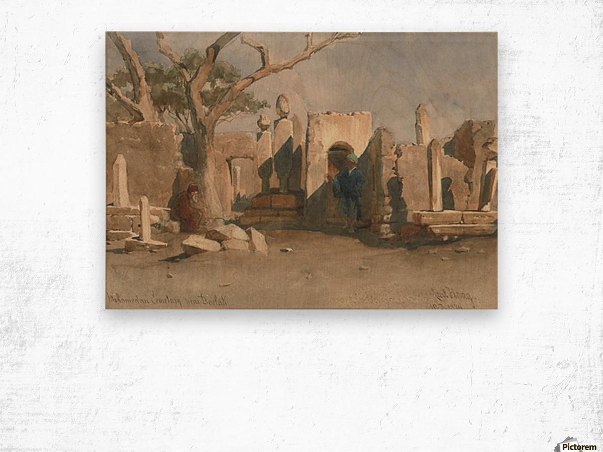 The Mohamedan Cemetery near Boolak 1874 Wood print