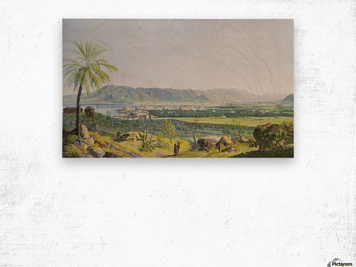 Landscape of Palermo Wood print