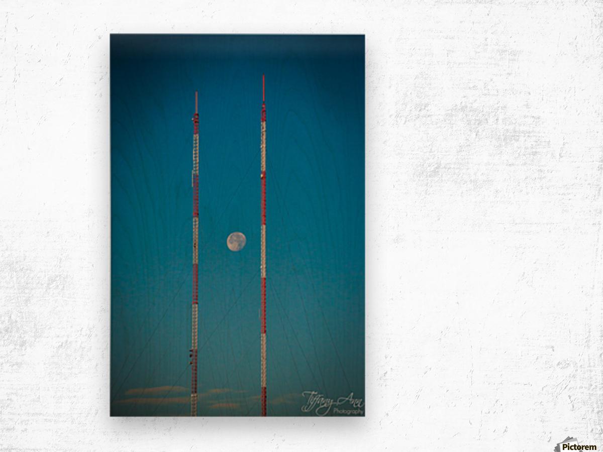 Chopsticks Wood print