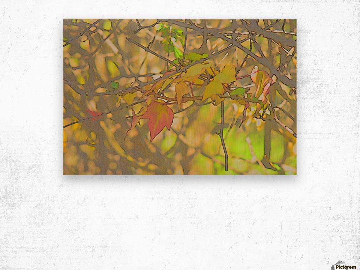 Leaves Macro 5 Abstract 2 Wood print