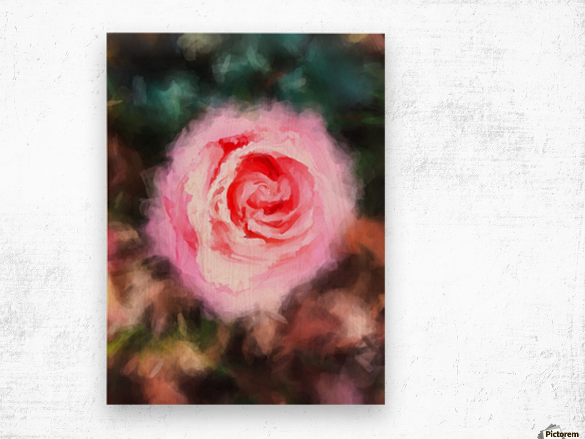 pink rose with green and brown background Wood print